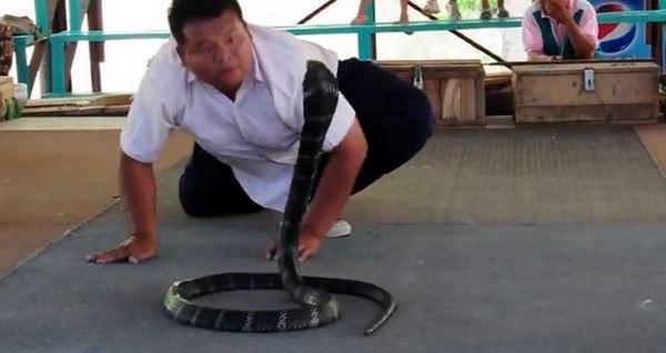 king-cobra-village-khon-kaen