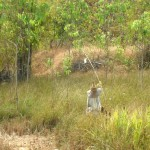 Thailand's Scarecrows and Black Holes