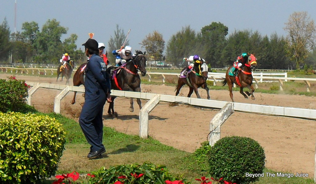Brilliantly Blue - Horse Racing at Intergames Park Udon Thani