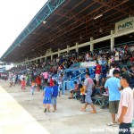 Brilliantly Blue – Horse Racing in Udon Thani