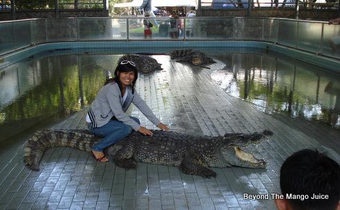 Million Years Stone Park And Pattaya Crocodile Farm