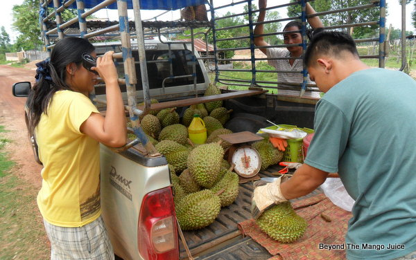 thai-village-life-durian-seller
