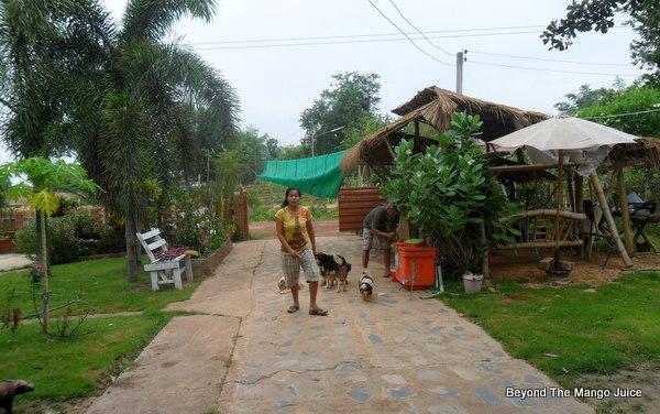thai-village-life-rabies-jab