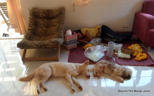 thai-village-afternoon-siesta