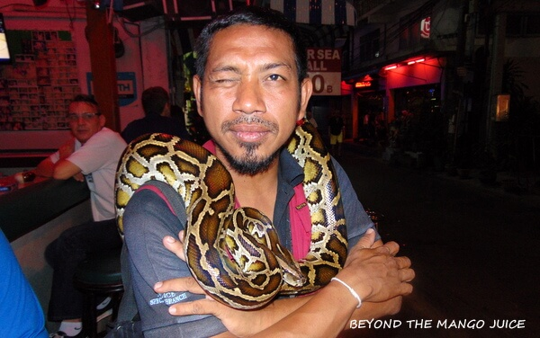 python pattaya