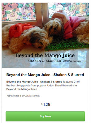 shaken & slurred ebook